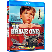The Brave One Blu-ray