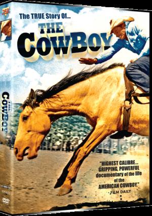 The-Cowboy